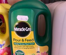 miracle grow plant feed